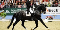 Edward Gal and Moorlands Totilas Set New Dressage World Record | Horses, Dressage  horses, Dressage